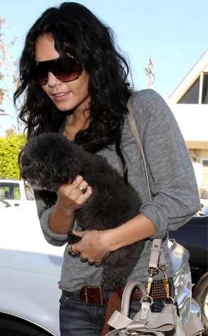 Vanessa Hudgens Dog 7