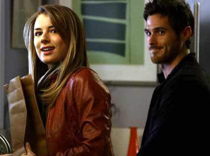 Dave Annable, Emily VanCamp, Brothers and Sisters