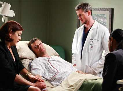 Eric Dane, Kate Walsh, Grant Show, Audra McDonald, Grey's Anatomy