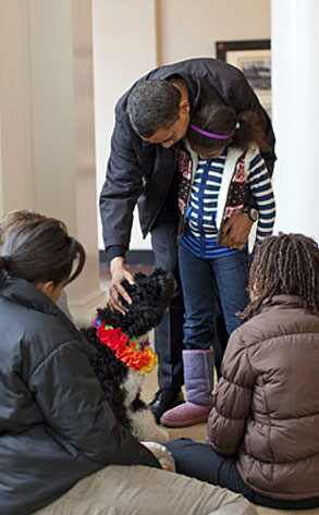 http://images.eonline.com/eol_images/Entire_Site/20090412/293.Obama.Dog.041209.jpg