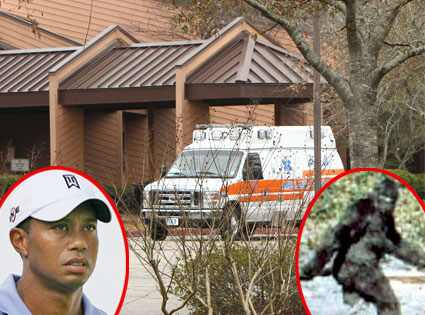 Sex Clinic, Tiger Woods, Bigfoot INFdaily.com; Hunter Martin/Getty Images