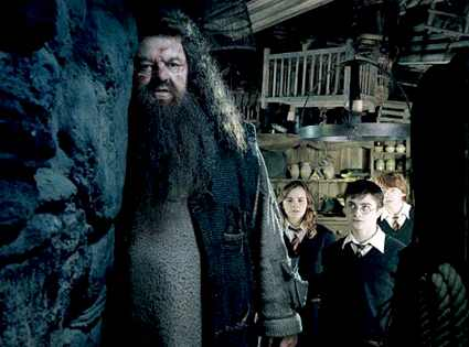 Harry Potter and the Order of the Phoenix, Robbie Coltrane