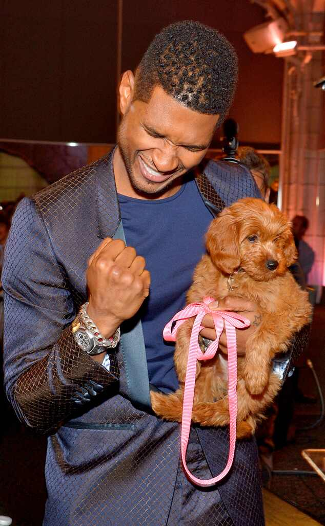 Usher, Puppy