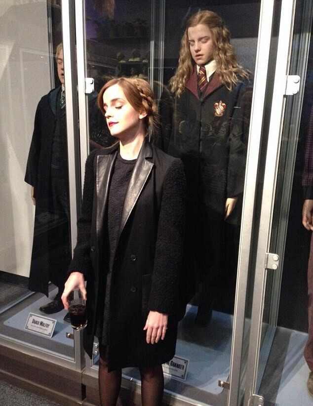 Emma Watson, Hermione Harry Potter