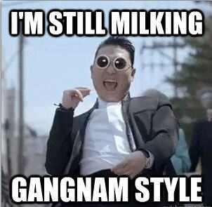 gangnam psy