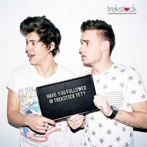 Harry Styles, Liam Payne, Trekstock