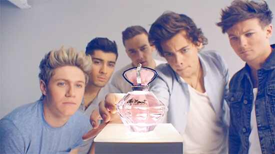 One Direction, Our Moment