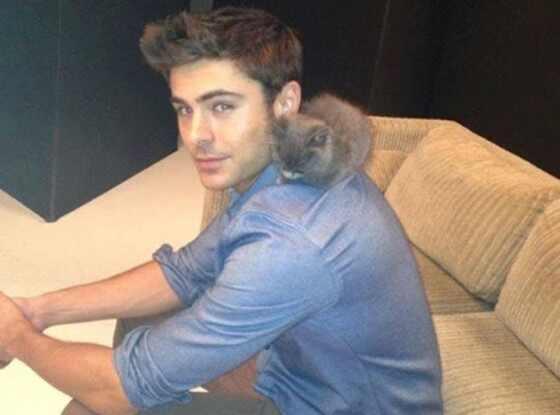 Zac Efron, Kitten