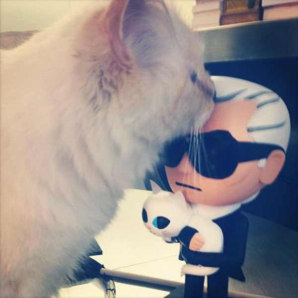 Karl Lagerfeld, Instagram, Choupette