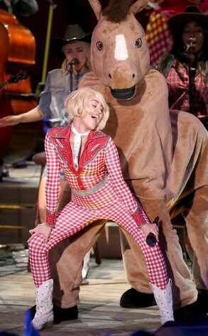 Miley Cyrus, Twerking, Horse