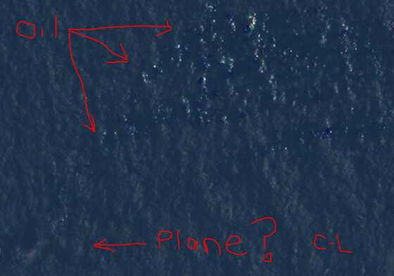 Courtney Love, Malaysian Plane