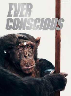 H&M, H&M Conscious Exclusive