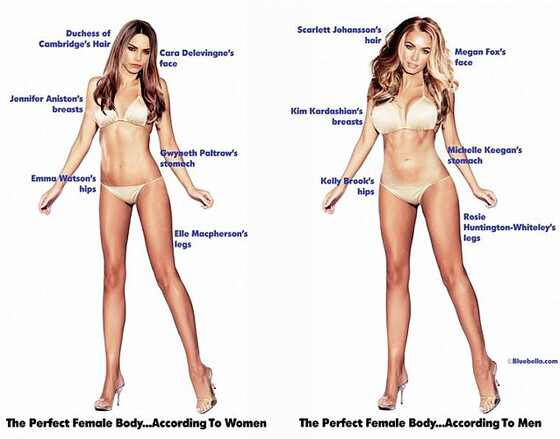 Bluebella, Perfect Body Composites