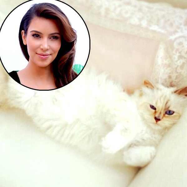 Kim Kardashian, Choupette Lagerfeld