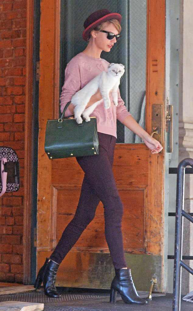 Taylor Swift Explains Why She Carries Cat Olivia Benson ...