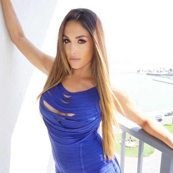 Total Divas Star Nikki Bella to Undergo Neck Surgery: Find ... Nikki Bella Instagram