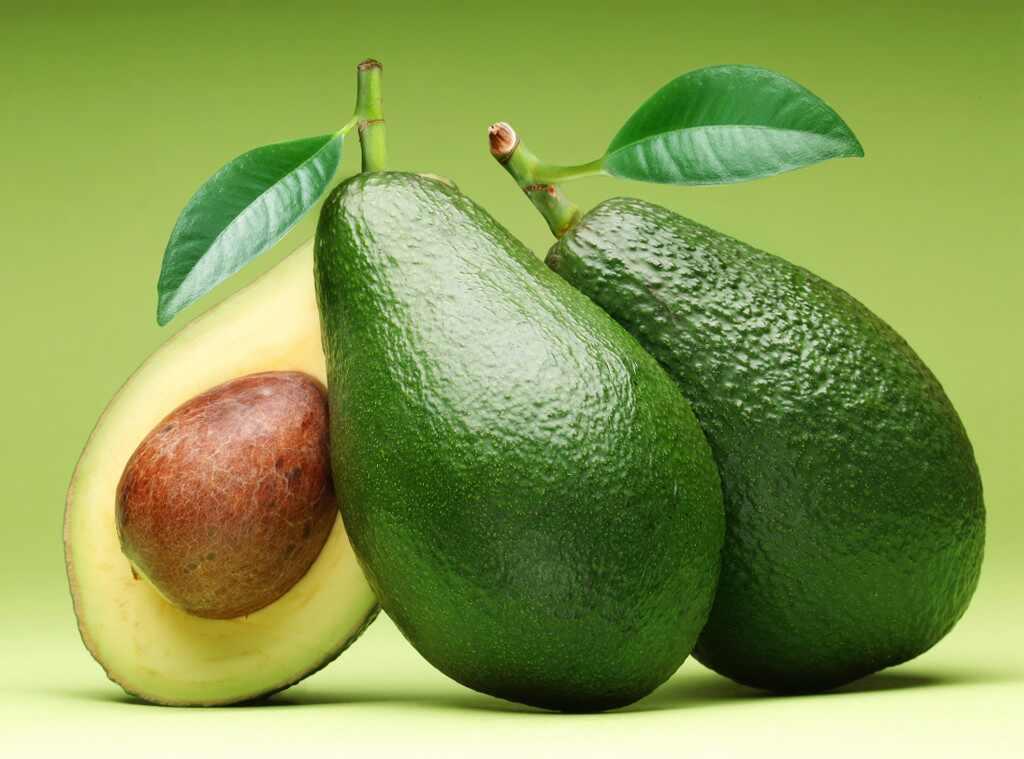 Generic Avocados