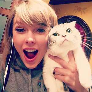 Taylor Swift, cat selfie, Instagram
