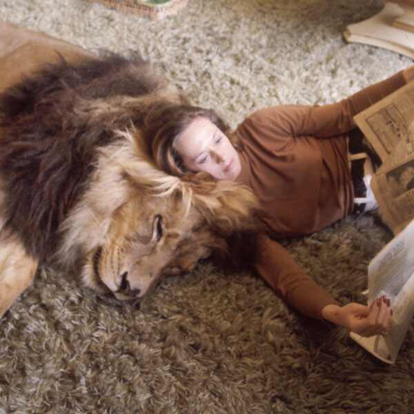 Tippi Hedren, Lion, Unusual Pets