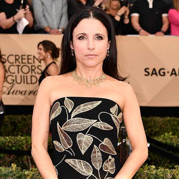 Julia Louis-Dreyfus, 2017 SAG Awards, Arrivals