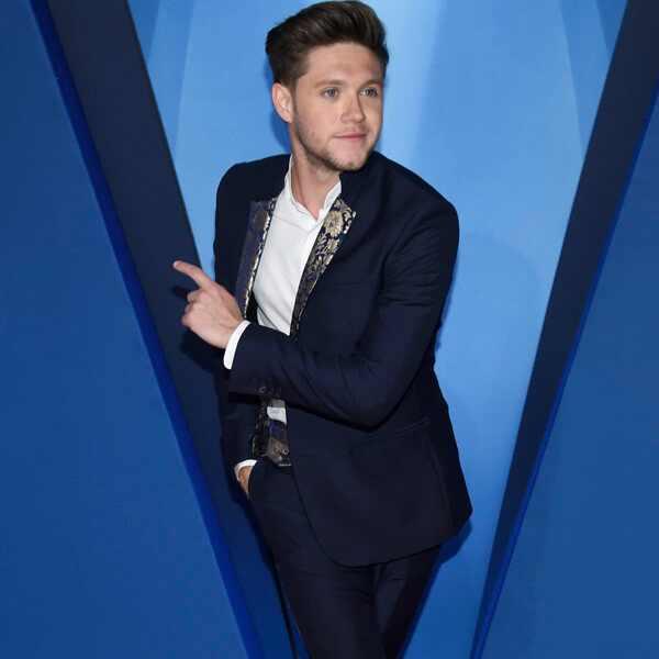 Niall Horan, 2017 CMA Awards