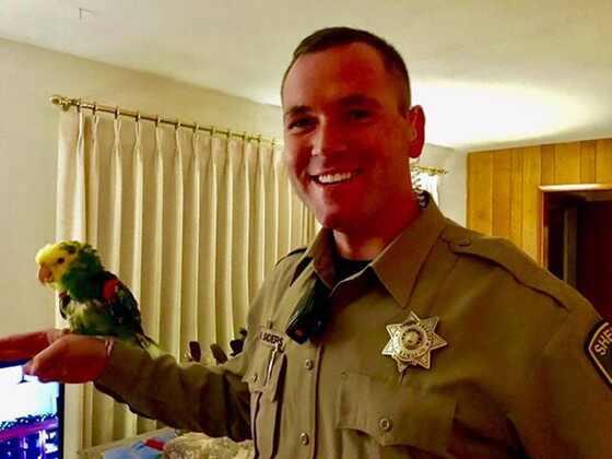 Polícia atende pedido de socorro de papagaio