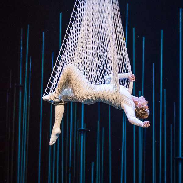 Cirque du Soleil 'Varekai' Show