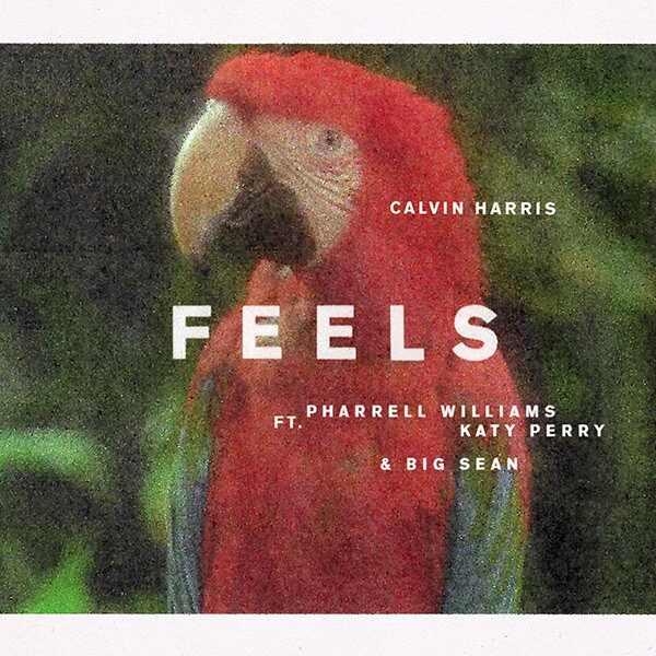 Big Sean. Foto do site da E! Online que mostra Calvin Harris lança Feels, em parceria com Katy Perry, Pharrell Williams e Big Sean