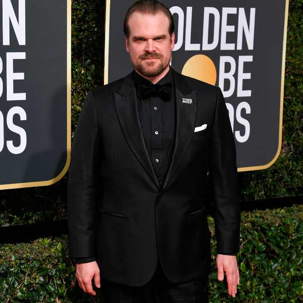 David Harbour, 2018 Golden Globes, Red Carpet Fashions