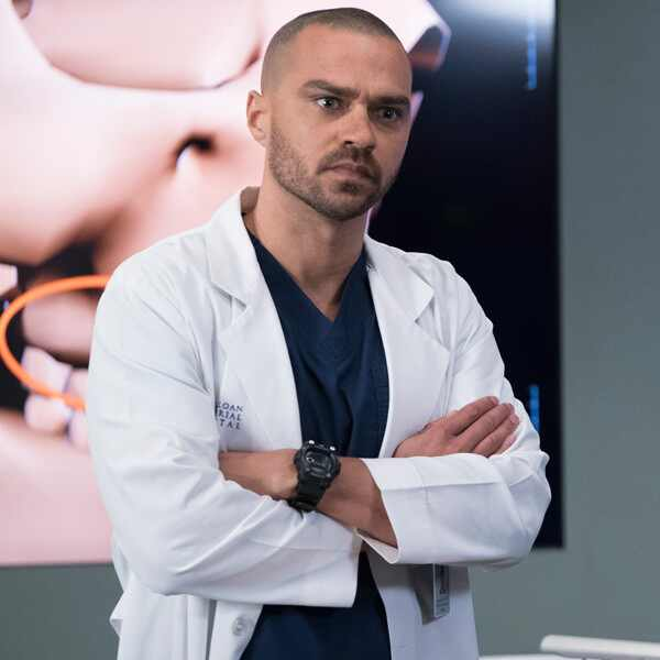 Grey's Anatomy, Jesse Williams