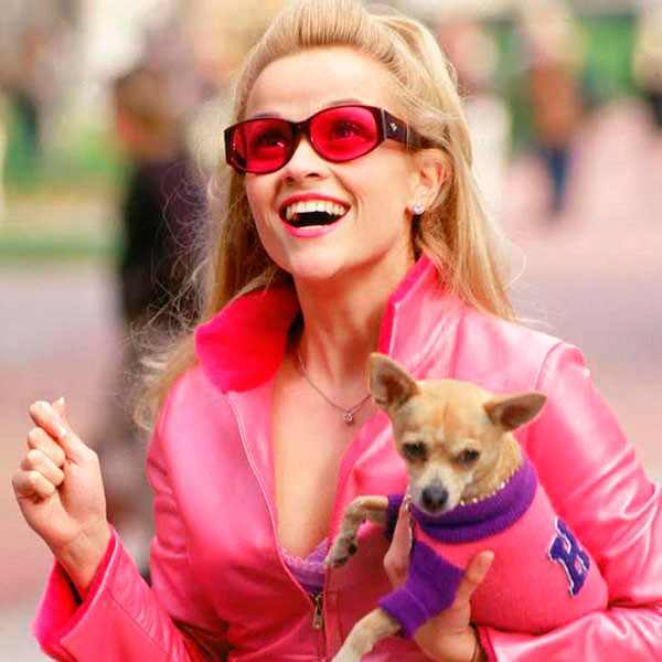 Reese Witherspoon, Legally Blonde