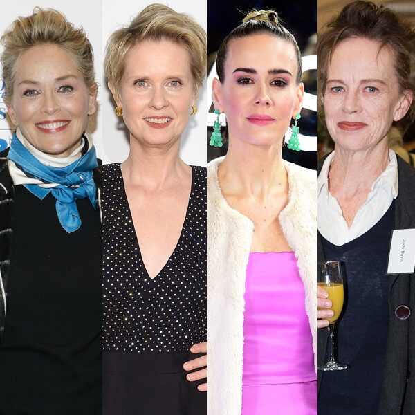 Sharon Stone, Cynthia Nixon, Sarah Paulson, Judy Davis