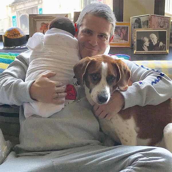 Andy Cohen, Son, Benjamin, Dog, Wacha, Valentine's Day 2019, Instagram