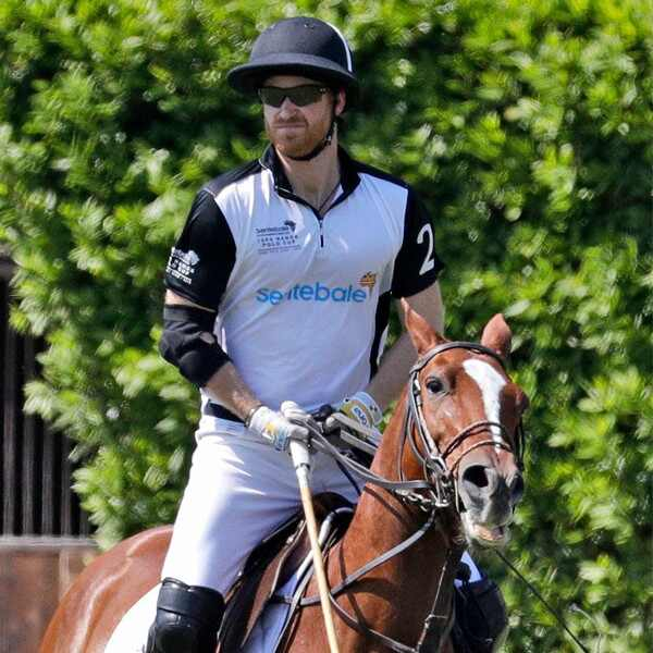 Prince Harry, Polo Cup