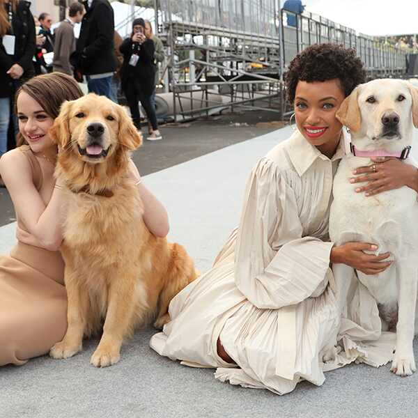 SAG Awards Red Carpet Roll Out, Joey King, Logan Browning, Dogs