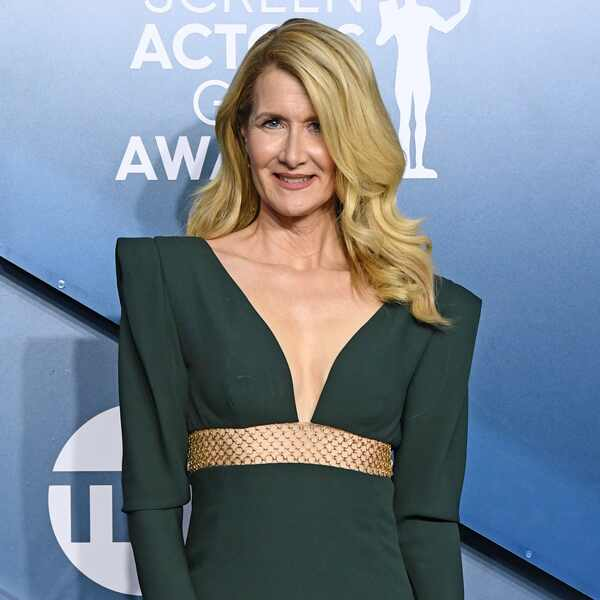 Laura Dern, 2020 Screen Actors Guild Awards, SAG Awards