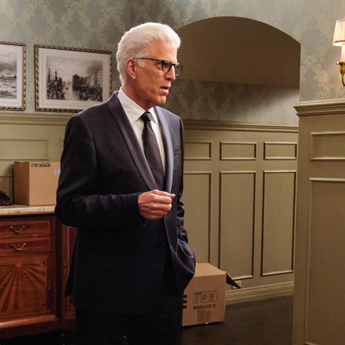 Mr. Mayor, Ted Danson