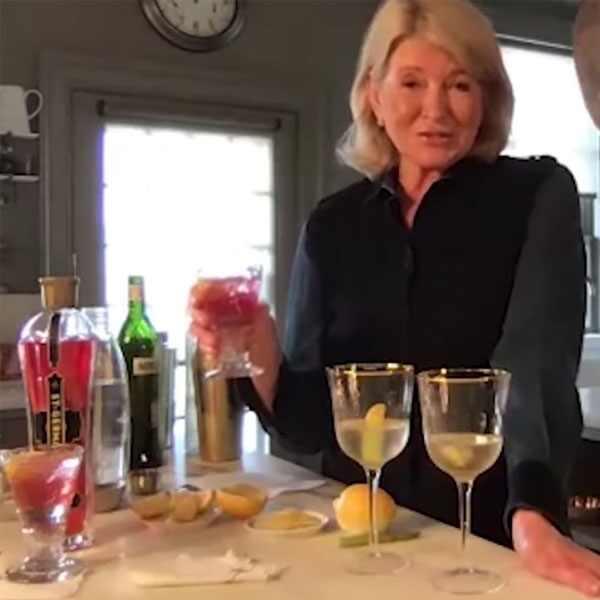 Martha Stewart, Perfect Martini Recipe, Seth Meyers