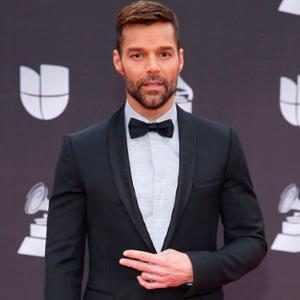 Ricky Martin, 2019 Latin Grammy Awards, Red Carpet Fashion