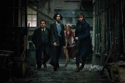 J.K. Rowling busca un Dumbledore para la secuela de <em>Fantastic Beasts And Where To Find Them</em> (Fotos + Video)