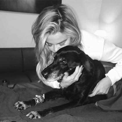 Khloé Kardashian lamenta morte de sua amada cachorra Gabbana